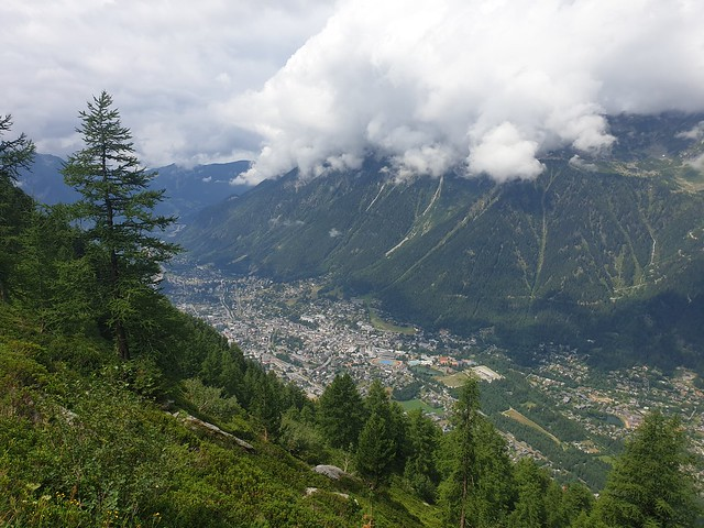looking down a mountain, covered in pine trees, to the valley and the town of Chamonix
